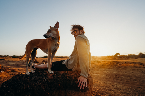Man sitting with dog looking the distance