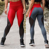 Fashion Women's Sports Leggings  Net Yarn Stitching Bottoms