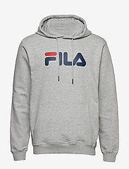 PURE HOODY (B13 Light grey melange)