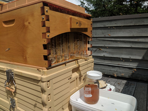 Apimaye bee hives with flow hive honey harvesting
