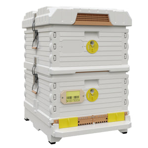Ergo PLUS White Double Brood Box Beehive Set - Apimaye