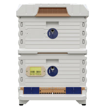 Load image into Gallery viewer, Ergo PLUS White Double Brood Box Beehive Set - Apimaye