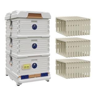 Ergo Plus White Simplicity Honey & Brood Beehive Set - Apimaye