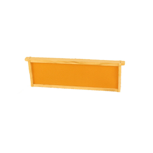 Medium Wooden Frames with Wax Coated Plastic Foundation - Apimaye