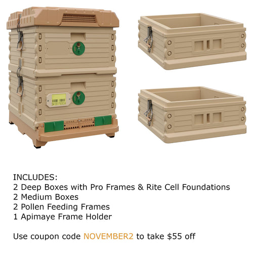 Ergo Plus Tan November Bundle with Two Medium Supers (November2) - Apimaye