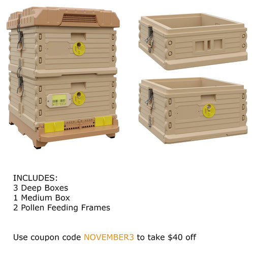 Ergo Plus Tan November Bundle with 1 Deep and 1 Medium Super (November3) - Apimaye