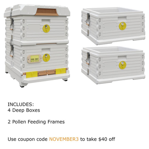 Ergo Plus White November Bundle with Two Deep Supers (November3) - Apimaye