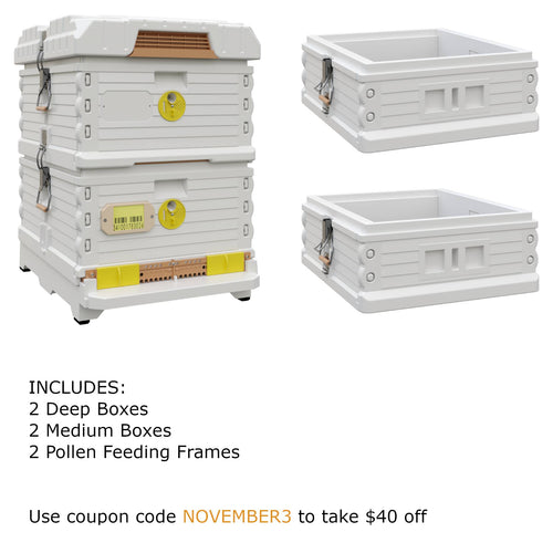 Ergo Plus White November Bundle with Two Medium Supers (November3) - Apimaye