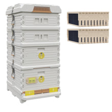 Load image into Gallery viewer, Ergo Plus White Honey & Brood Beehive Set - Apimaye