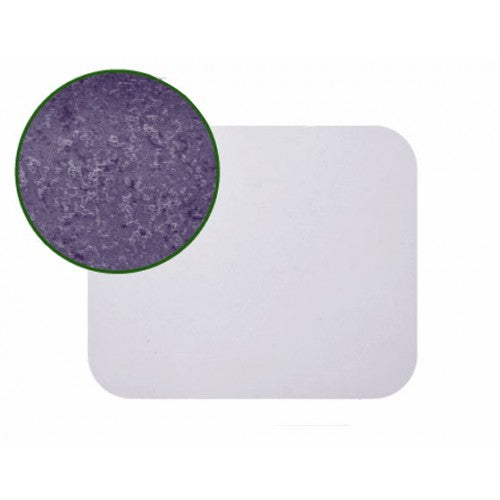 Cytoplast GBR-200 - Non-Textured PTFE Membrane (25mm x 30mm) - 4/Box - Avtec Surgical