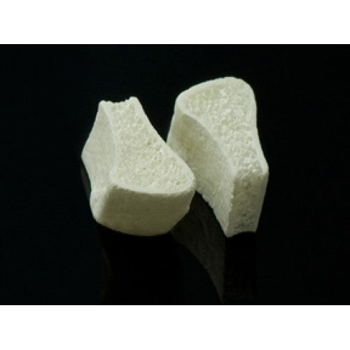 Ilium Tri-Cortical Block Graft 5mm (5 x 20 x 9 x 5)