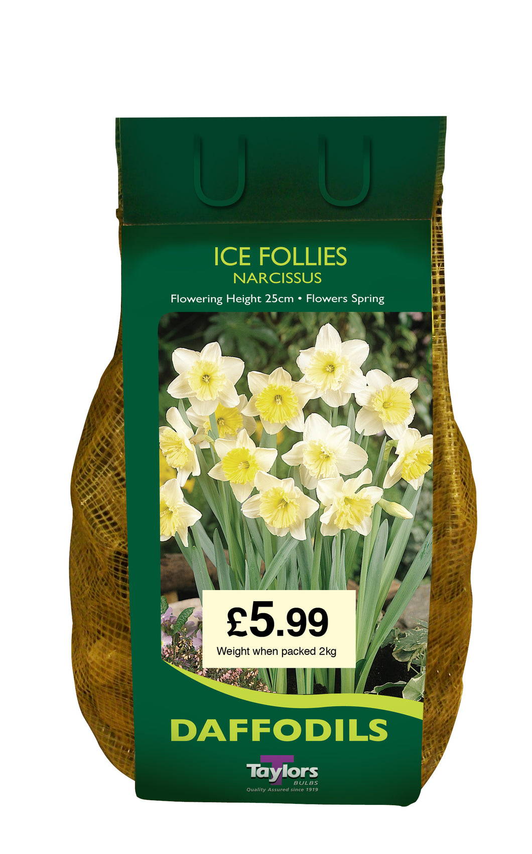 Narcissi Ice Follies Carri-Pack 2kg DC66