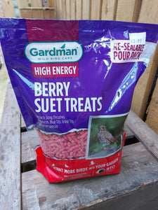 Gardman Large Berry Suet Treats 1.1kg