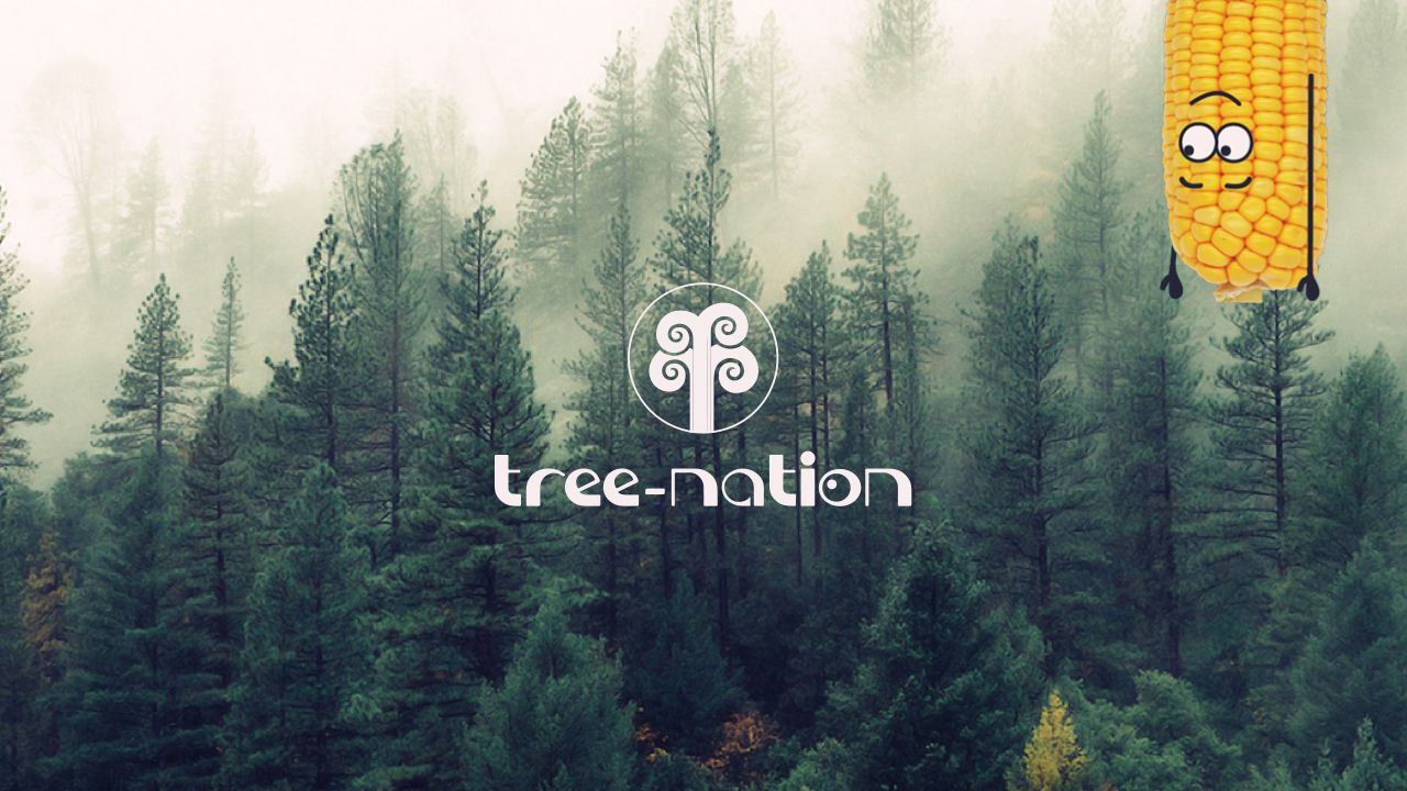 Tree-Nation Mielie Mailer Partnership