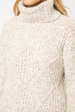 Load image into Gallery viewer, Turtle Neck Sweater