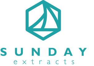Sunday Extracts