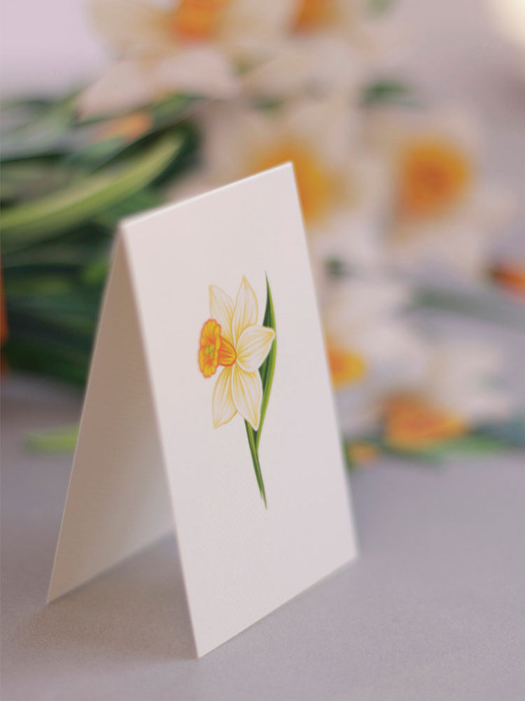 "FreshCut Paper's 3D pop up Daffodils paper flower bouquet include a matching 2.75"" x 8"" note card so you may write your own personal message to your gift recipient."