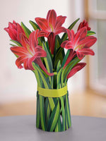 "FreshCut Paper 3D pop up ""Red Amaryllis"" measure 12"" tall by 9"" wide. Our Red Amaryllis can stand alone or be used with the accompanying vase that comes with your bouquet."