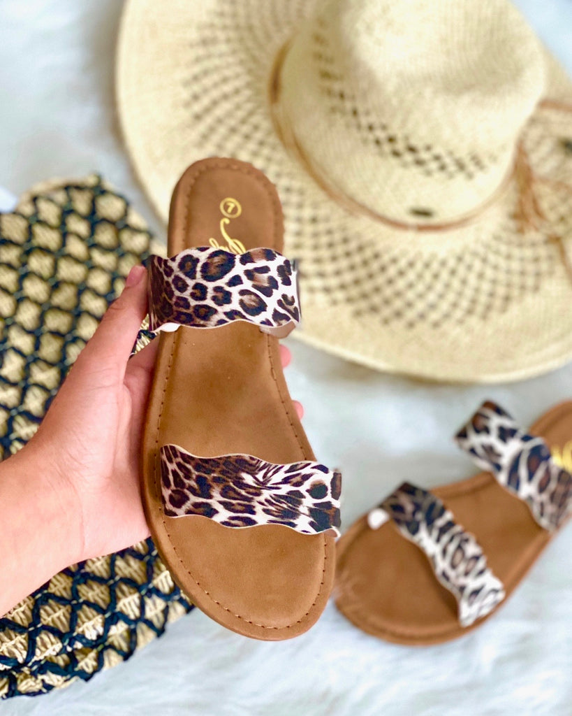 Snow leopard slides