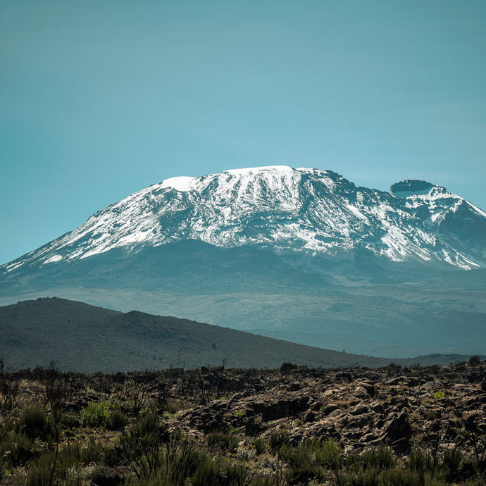 Fine Art Print 'Kili Watch'