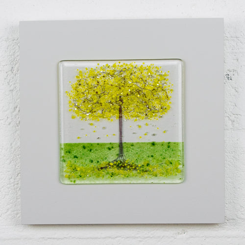 Small Yellow Blossom Tree