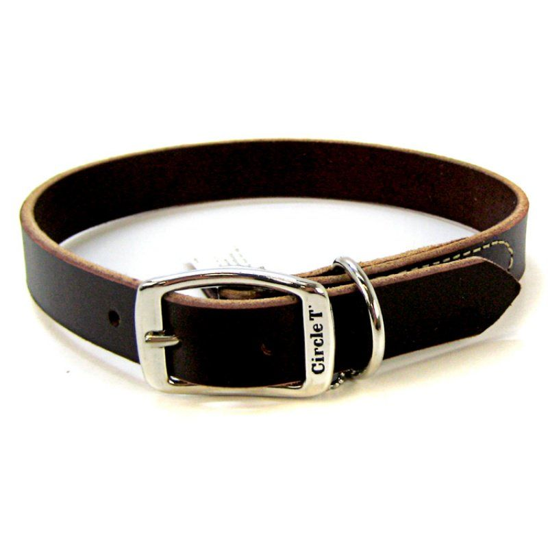"Circle T Latigo Leather Town Collar 22"" Long x 1"" Wide - All Pets Store"