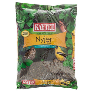 Kaytee Nyger Seed Bird Food 3 lbs - All Pets Store