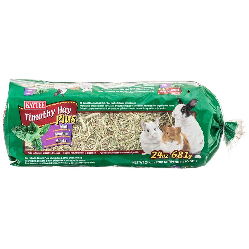 Kaytee Timothy Hay Plus Mint 24 oz - All Pets Store