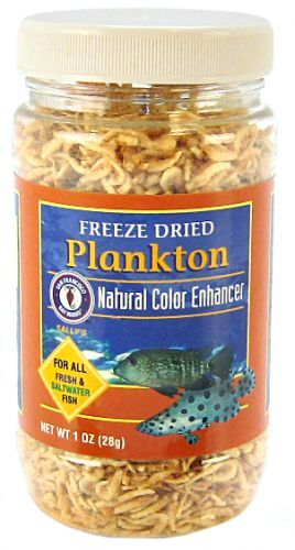 SF Bay Brands Freeze Dried Plankton 28 Grams - All Pets Store