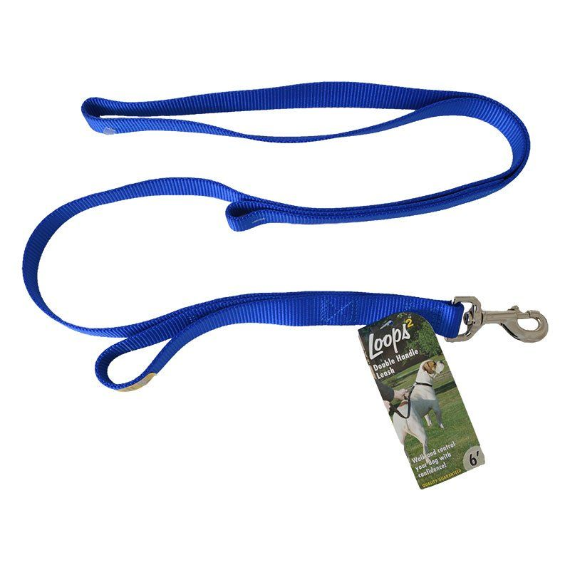"Loops 2 Double Nylon Handle Leash - Blue 6"" Long x 1"" Wide - All Pets Store"