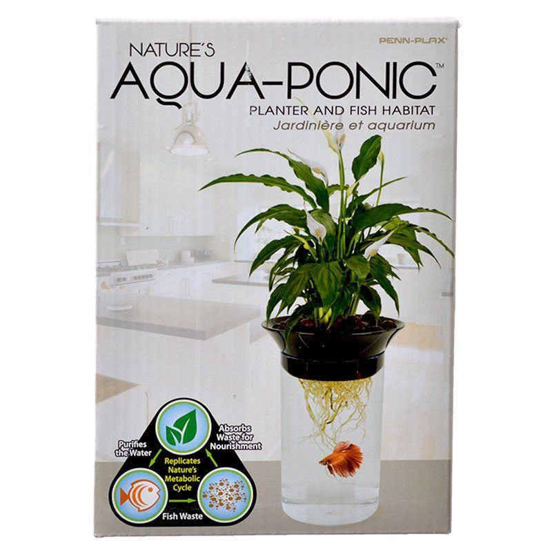 Penn Plax Nature's Aqua-Ponic Planter & Fish Habitat 0.5 Gallon Tank (3