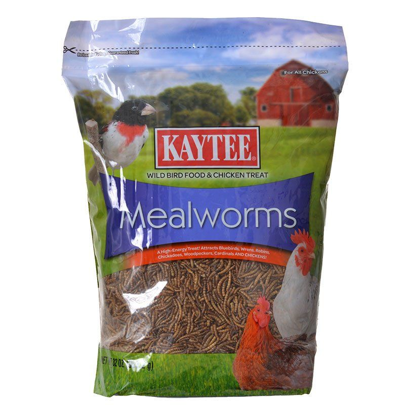 Kaytee Mealworms Bird Food 32 oz - All Pets Store