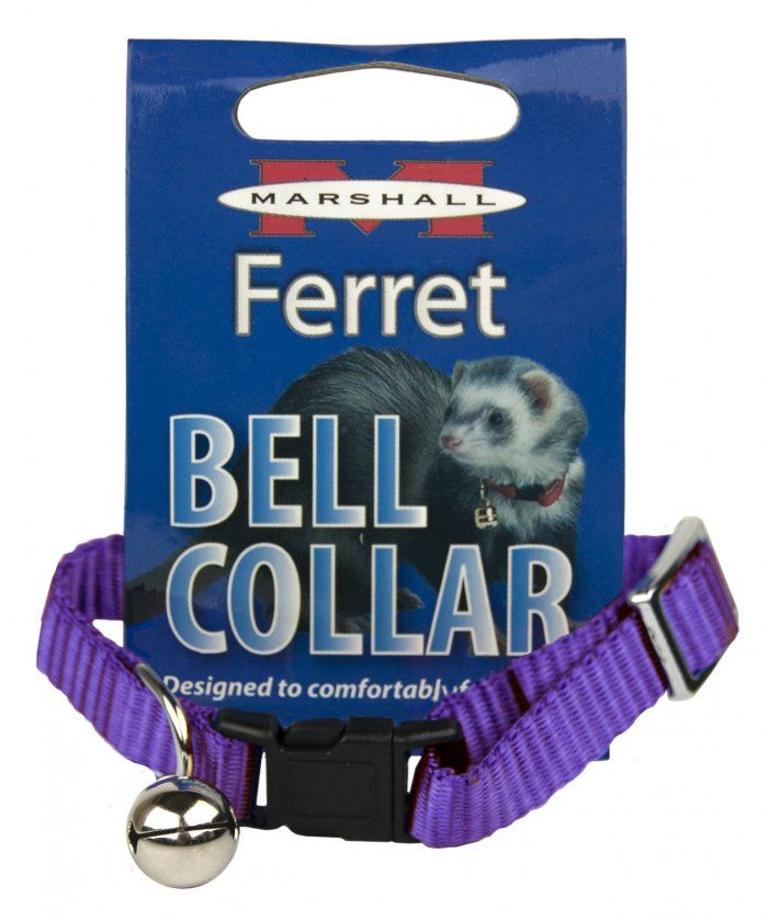 Marshall Ferret Bell Collar - Purple 1 Count - All Pets Store