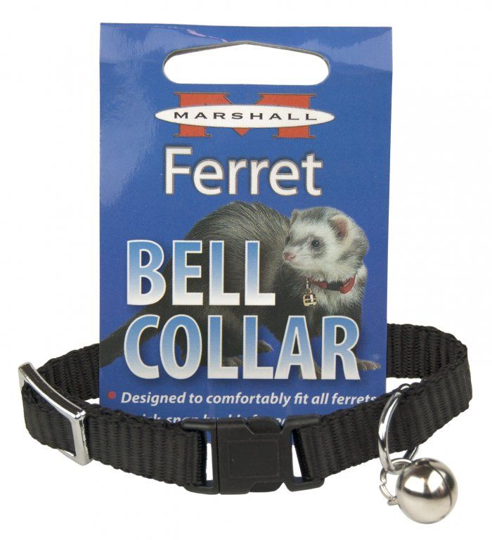 Marshall Ferret Bell Collar - Black 1 Count - All Pets Store