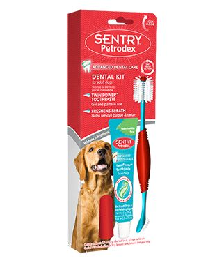 Sentry Petrodex Dental Kit for Adult Dogs 1 count - All Pets Store