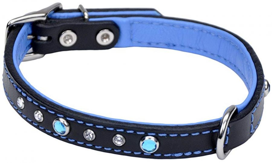 CircleT Fashion Leather Jewel Collar Blue 14?L x 5/8?W - All Pets Store