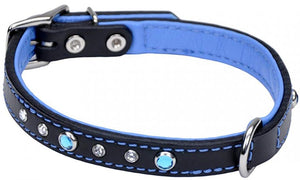 CircleT Fashion Leather Jewel Collar Blue 20?L x 3/4?W - All Pets Store