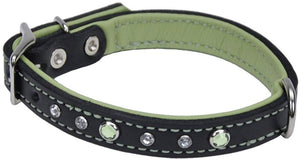 CircleT Fashion Leather Jewel Collar Green 18?L x 3/4?W - All Pets Store