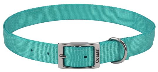 "Coastal Pet Double-ply Nylon Dog Collar Teal 22""L x 1""W - All Pets Store"