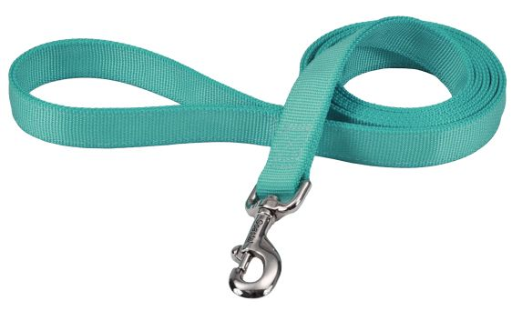 "Coastal Pet Double-ply Nylon Dog Lead Teal 48""L x 1""W - All Pets Store"