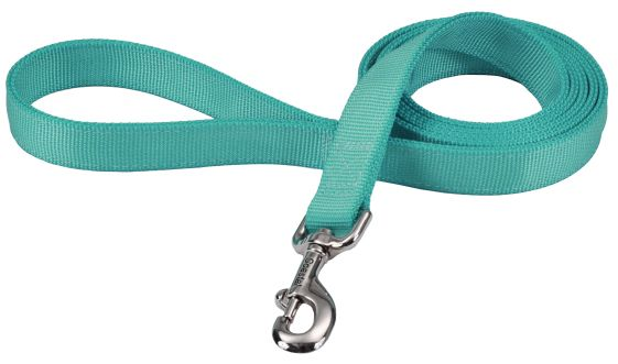 "Coastal Pet Double-ply Nylon Dog Lead Teal 72""L x 1""W - All Pets Store"