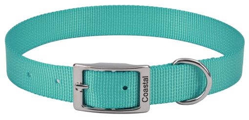 "Coastal Pet Single-ply Teal Nylon Dog Collar 10""L x 3/8""W - All Pets Store"