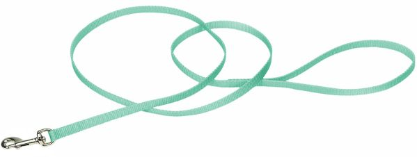 "Coastal Pet Single-ply Nylon Dog Leash Teal 4'L x 3/8""W - All Pets Store"