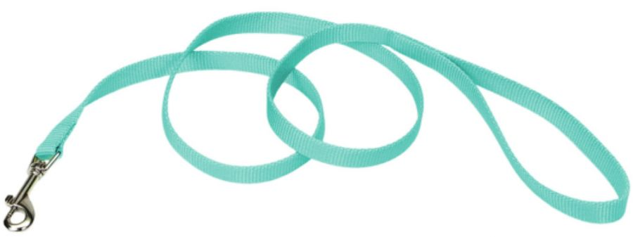 "Coastal Pet Single-ply Teal Nylon Dog Lead 4'L x 5/8""W - All Pets Store"