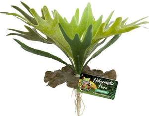 Zoo Med Naturalistic Flora Staghorn Fern 1 count - All Pets Store