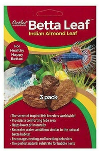 CaribSea Betta Indian Almond leaf 3 leaves - All Pets Store