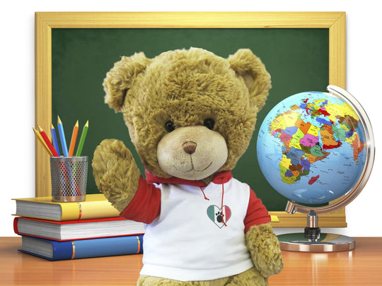 Bernardo in Italy - SCHOOL EDITION - Touring Teddies