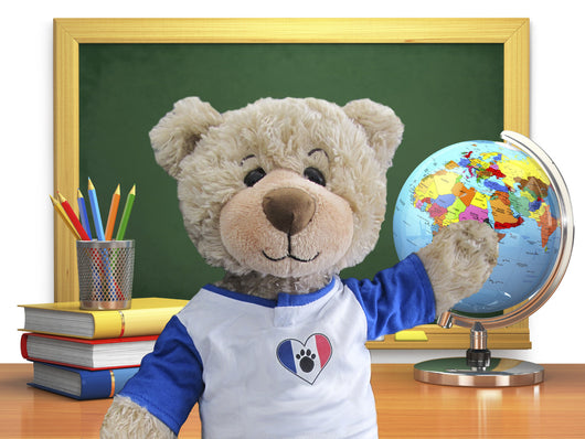 Hugo in France - SCHOOL EDITION - Touring Teddies