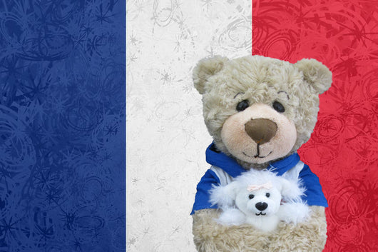 HUGO in FRANCE - Touring Teddies