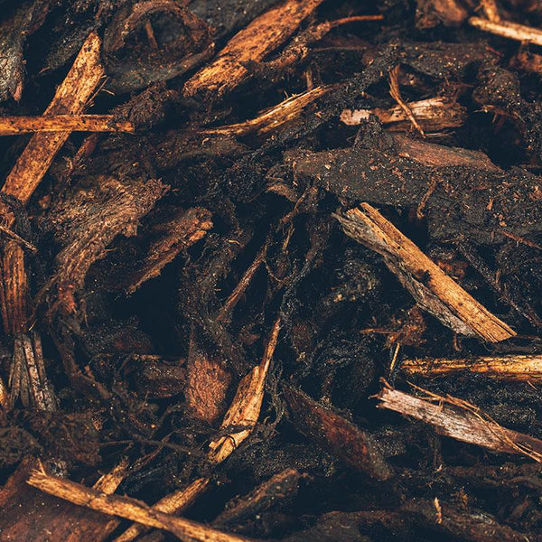 Bark Wholesale Delivery